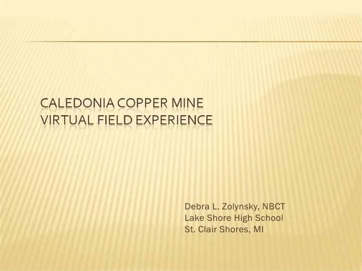Caledonia copper mine vfe