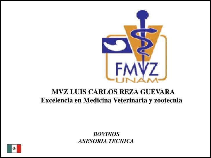 MVZ LUIS CARLOS REZA GUEVARA              Excelencia en Medicina Veterinaria y zootecnia                                 B...