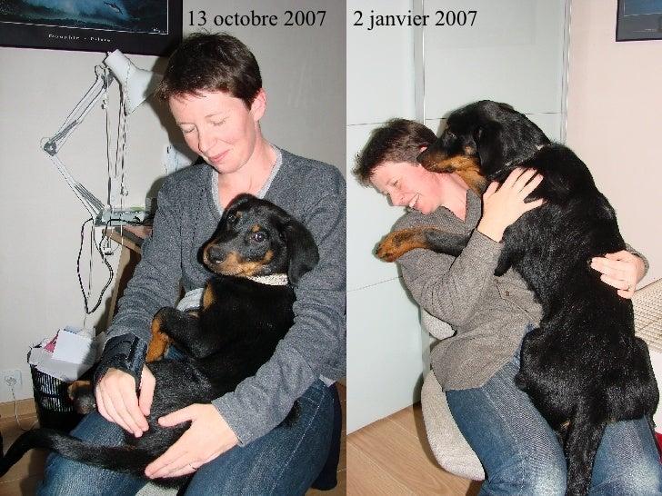 13 octobre 2007 2 janvier 2007