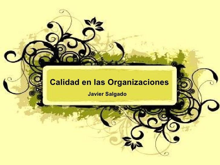Calidad en las Organizaciones Javier Salgado