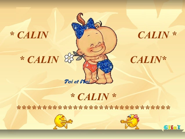 * CALIN CALIN * * CALIN CALIN* * CALIN * ******************************