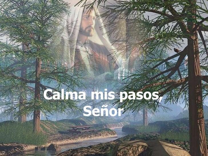Calma mis pasos Señor