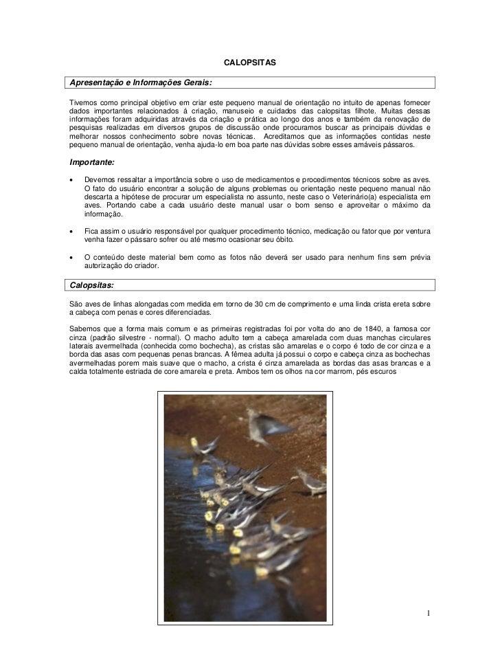 CALOPSITAS  Apresentação e Informações Gerais:  Tivemos como principal objetivo em criar este pequeno manual de orientação...