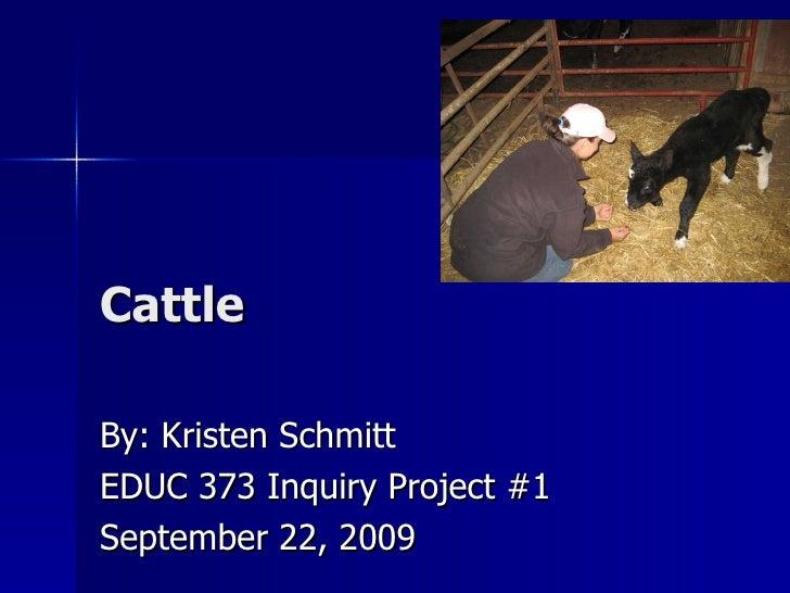 Cattle By: Kristen Schmitt EDUC 373 Inquiry Project #1 September 22, 2009