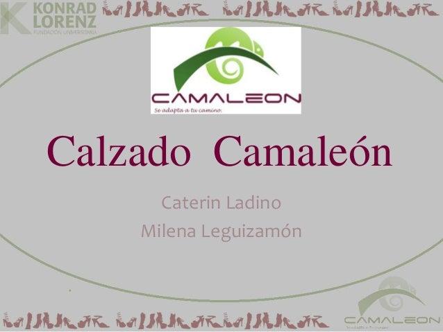 Calzado CamaleónCaterin LadinoMilena Leguizamón