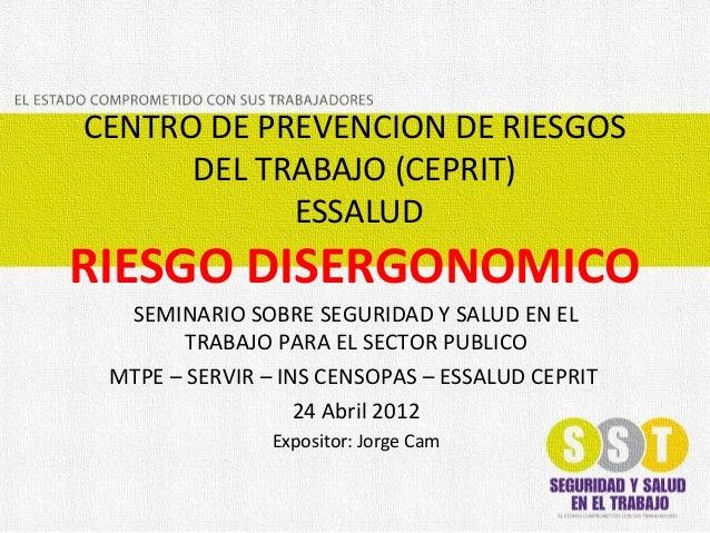 CENTRO DE PREVENCION DE RIESGOS DEL TRABAJO (CEPRIT) ESSALUD RIESGO DISERGONOMICO SEMINARIO SOBRE SEGURIDAD Y SALUD EN EL ...