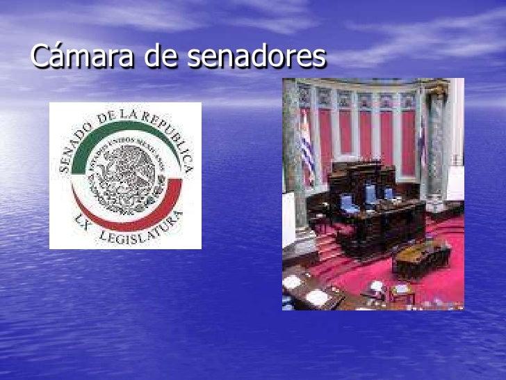 Cámara de senadores <br />