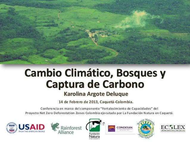 Cambio Climático, Bosques y   Captura de Carbono                       Karolina Argote Deluque                    14 de Fe...