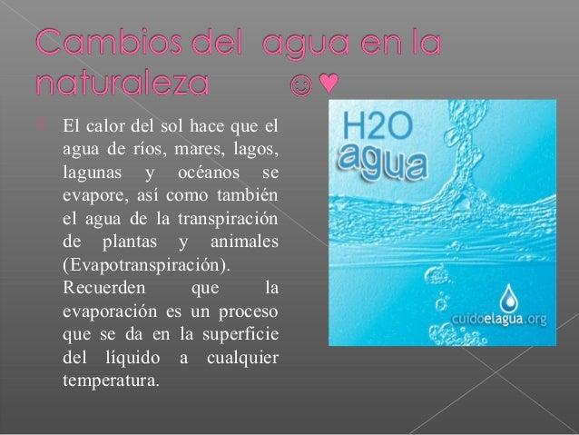  El calor del sol hace que el agua de ríos, mares, lagos, lagunas y océanos se evapore, así como también el agua de la tr...