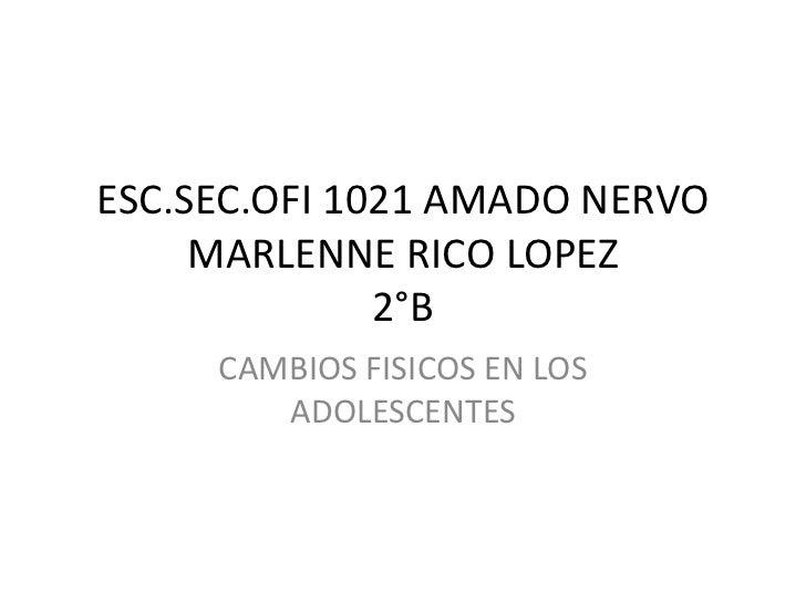 ESC.SEC.OFI 1021 AMADO NERVOMARLENNE RICO LOPEZ2°B<br />CAMBIOS FISICOS EN LOS ADOLESCENTES<br />