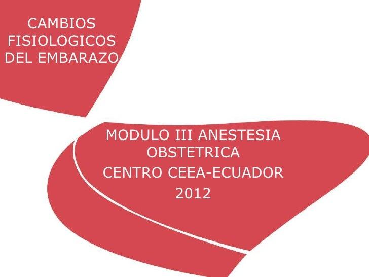 CAMBIOSFISIOLOGICOSDEL EMBARAZO          MODULO III ANESTESIA               OBSTETRICA          CENTRO CEEA-ECUADOR       ...