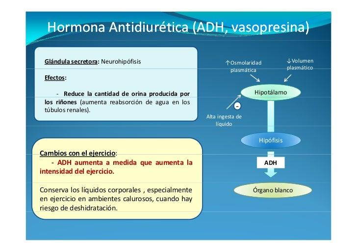 cuadro de hormonas esteroideas