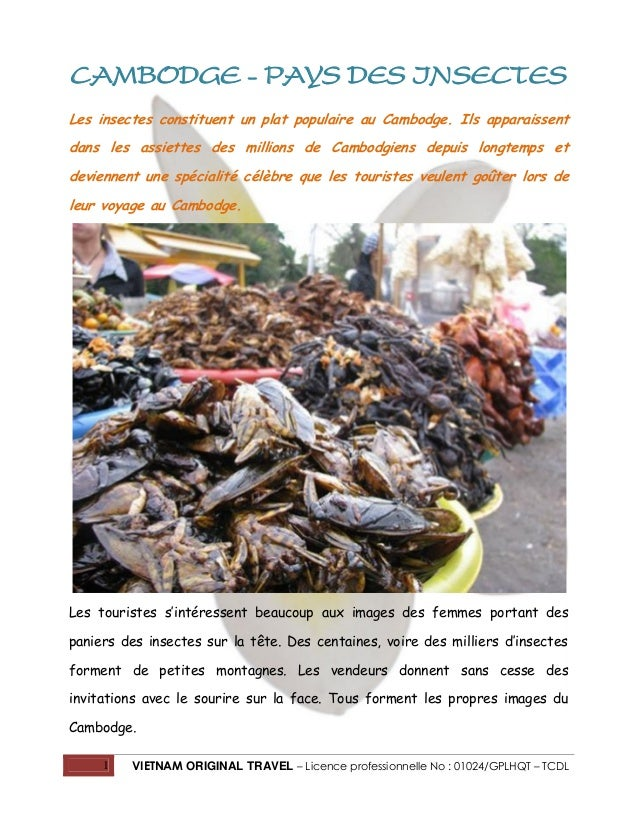 Cambodge - Pays des insectes Les insectes constituent un plat populaire au Cambodge. Ils apparaissent dans les assiettes d...