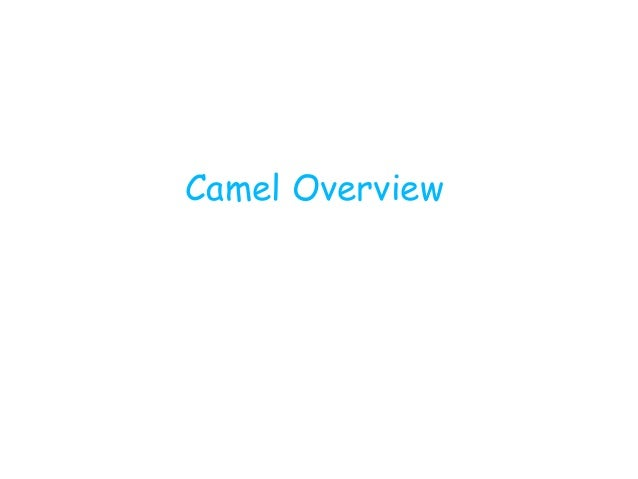 Camel overview