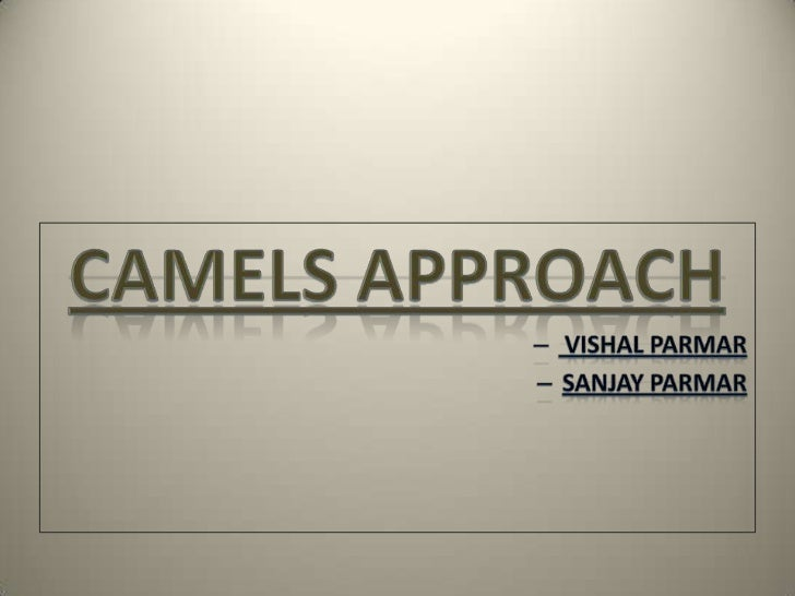 • Camels approach is use to analyze bank risk• Developed in US• This approach helps to evaluate banks with  complete cover...