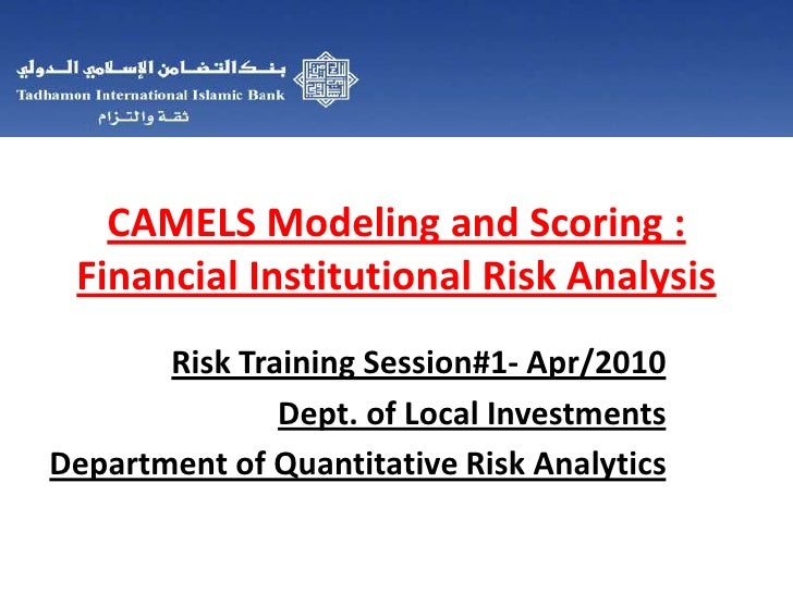 CAMELS Modeling and Scoring :Financial Institutional Risk Analysis<br />Risk Training Session#1- Apr/2010 <br />Dept. of L...
