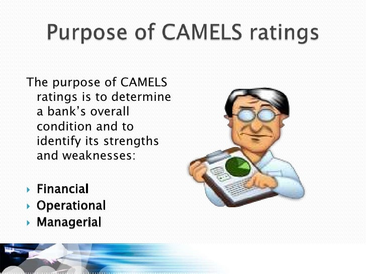 camel rating Camel is a new perfume by zoologist for women and men and was released in 2017 the scent is spicy-oriental the longevity is above-average it is still.