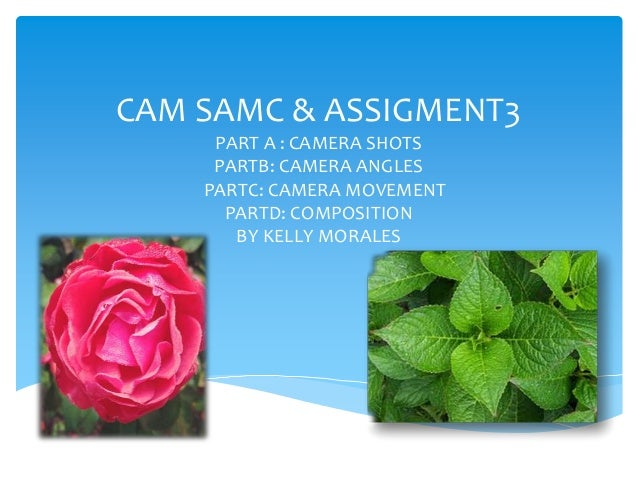 CAM SAMC & ASSIGMENT3 PART A : CAMERA SHOTS PARTB: CAMERA ANGLES PARTC: CAMERA MOVEMENT PARTD: COMPOSITION BY KELLY MORALE...