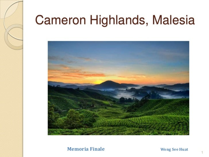 Cameron Highlands, Malesia<br />1<br />Memoria Finale                                                Wong See Huat<br />