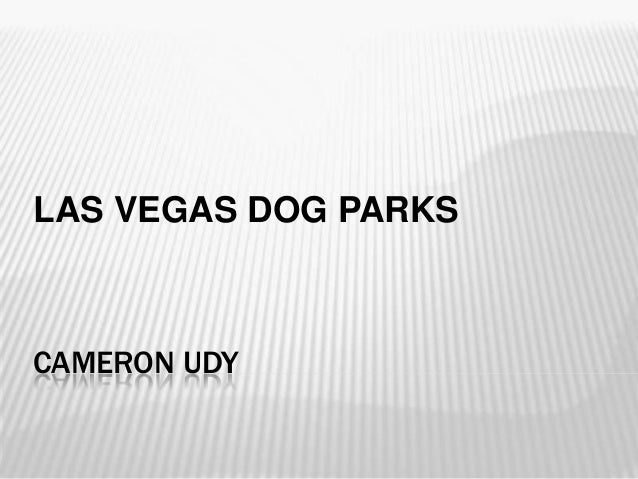 CAMERON UDY LAS VEGAS DOG PARKS