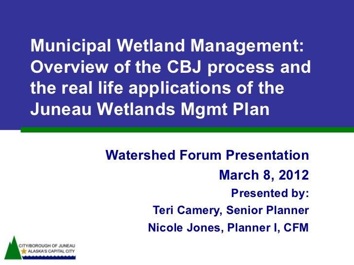 Juneau Wetland Management Plan by Teri Camery and Nicole Jones