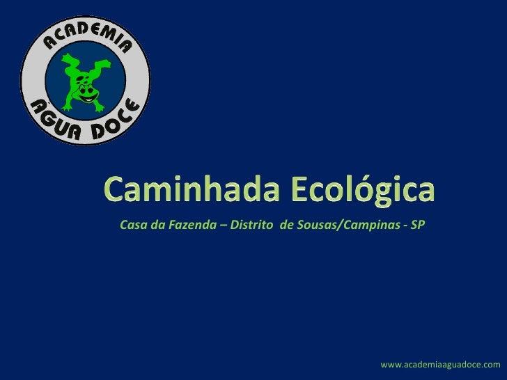 Caminhada Ecológica <br />Casa da Fazenda – Distrito  de Sousas/Campinas - SP<br />www.academiaaguadoce.com<br />