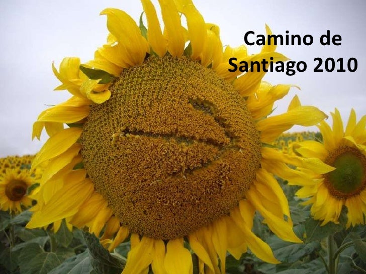 Camino de Santiago 2010<br />
