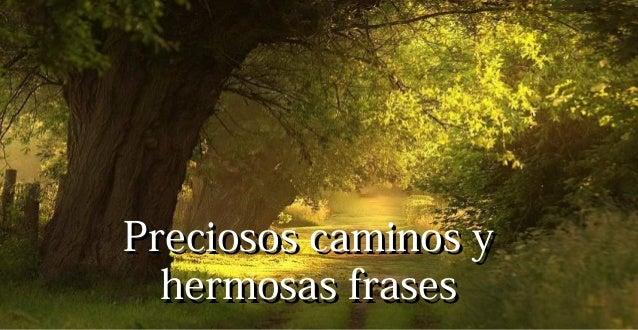 Preciosos caminos yPreciosos caminos yhermosas fraseshermosas frases