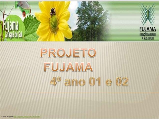 Fonte imagem:http://fujama.jaraguadosul.com.br/