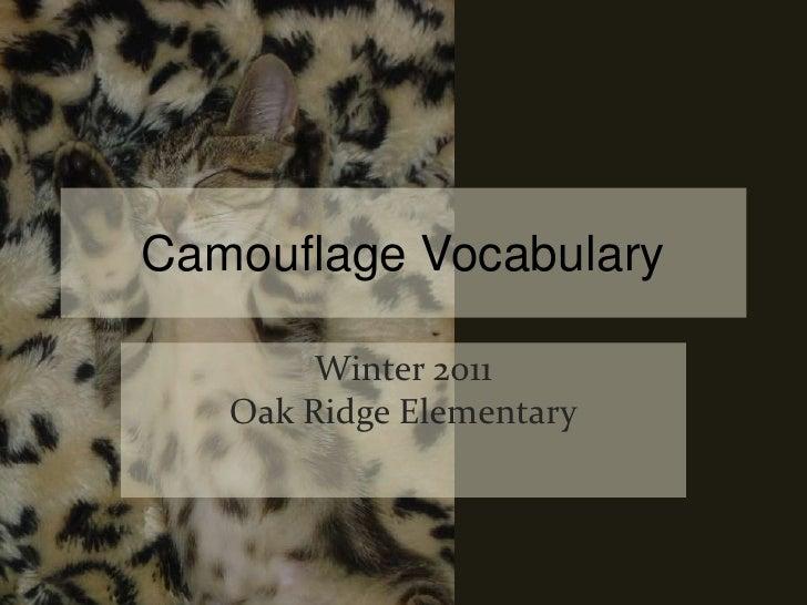 Camouflage Vocabulary Winter 2011Oak Ridge Elementary