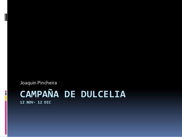 Joaquin PincheiraCAMPAÑA DE DULCELIA12 NOV- 12 DIC