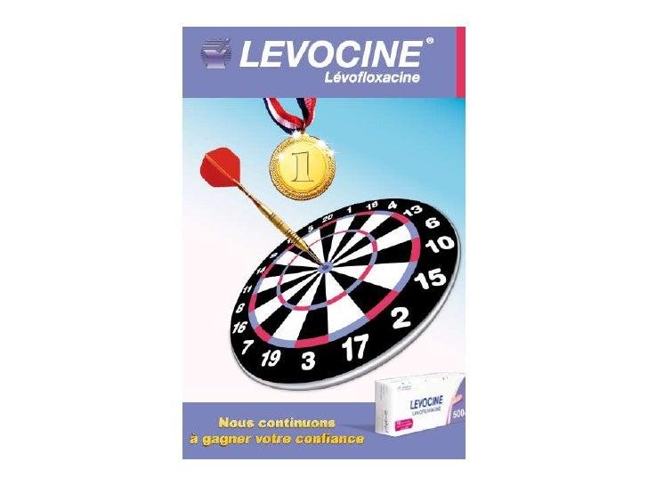 Comportement LEVOCINE/National