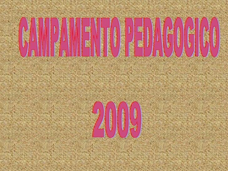 CAMPAMENTO PEDAGOGICO  2009