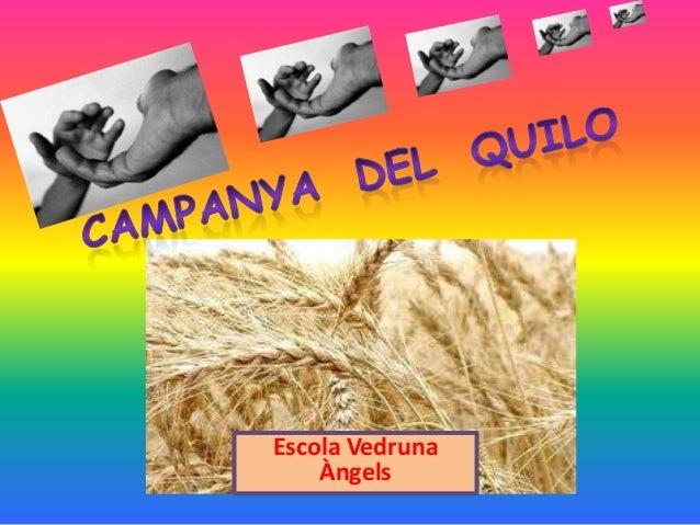Campanyadelquilo201213