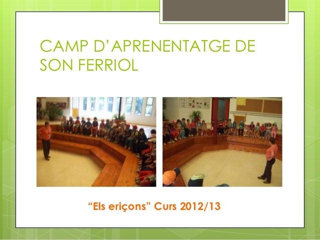 """CAMP D'APRENENTATGE DESON FERRIOL""""Els eriçons"""" Curs 2012/13"""