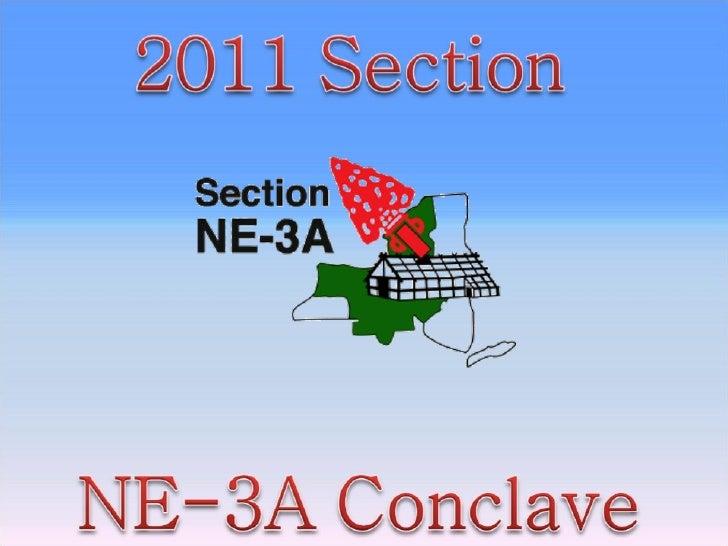 NE-3A Conclave 2011 at Camp Gorton