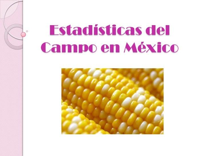 Estadísticas delCampo en México