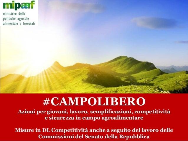 #CAMPOLIBERO Azioni per giovani, lavoro, semplificazioni, competitività e sicurezza in campo agroalimentare Misure in DL C...