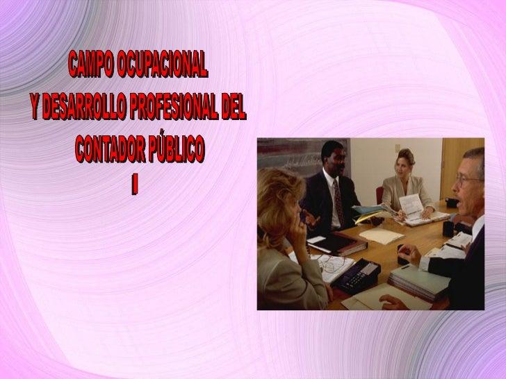 INTRODUCCIONEl presente trabajo se plantea como una exposición del perfil del contador, loscampos ocupacionales que se le ...