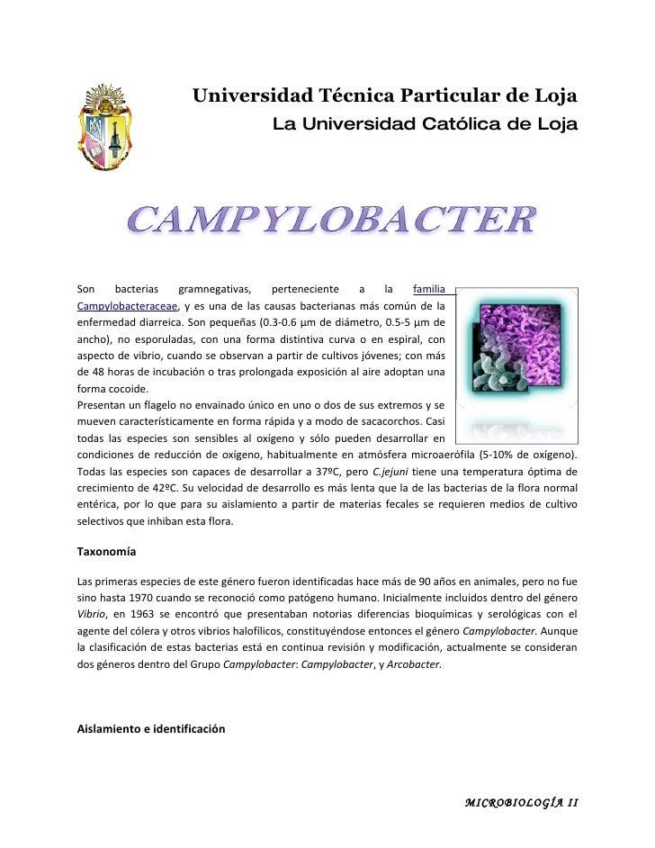 Universidad Técnica Particular de Loja                                         La Universidad Católica de Loja     Son    ...