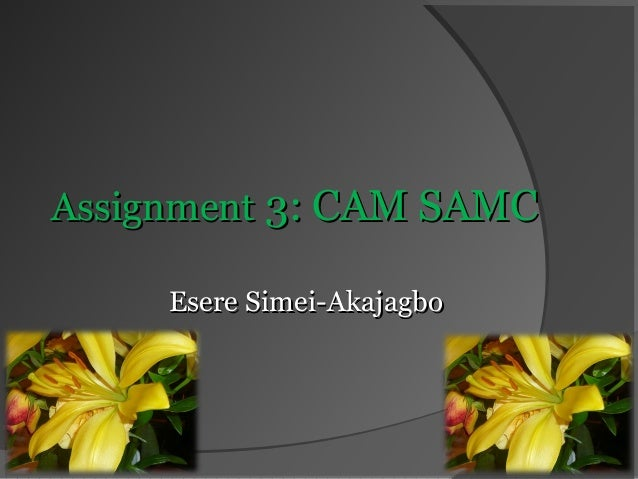 Assignment 3: CAM SAMC