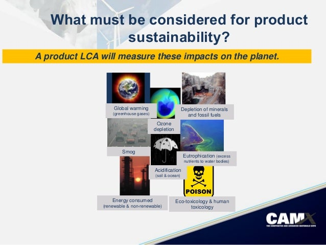 the sustainability of new product development Organizing and managing new product development has been perceived as challenging issues in both academia and industry for several decades the aspect of.