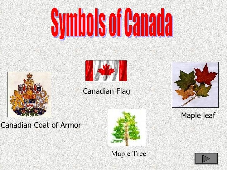 Canadian Culture Symbols Symbols of Canada Canadian