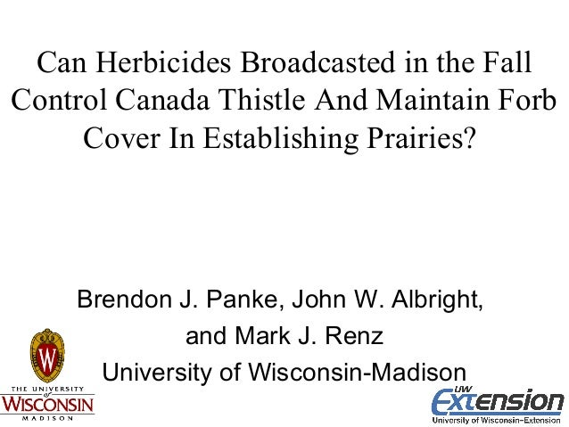 Can Herbicides Broadcasted in the Fall Control Canada Thistle And Maintain Forb Cover In Establishing Prairies? Brendon J....