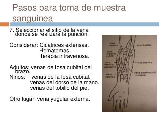 El departamento de la cirugía vascular pirogova