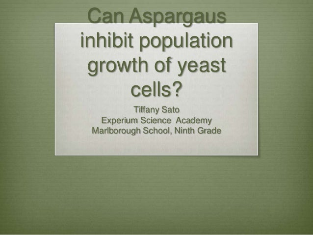 Can Aspargausinhibit population growth of yeast      cells?           Tiffany Sato  Experium Science Academy Marlborough S...