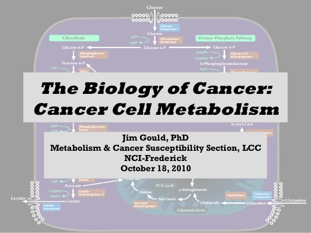The Biology of Cancer: Cancer Cell Metabolism Jim Gould, PhD Metabolism & Cancer Susceptibility Section, LCC NCI-Frederick...