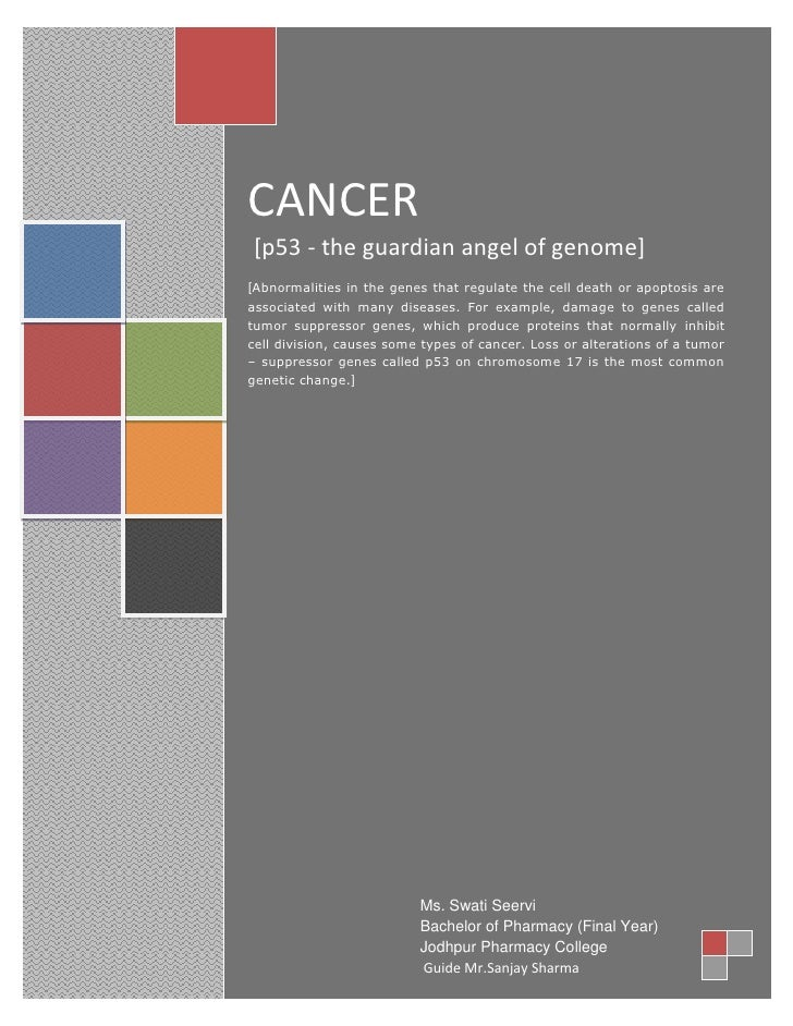 Cancer P53 By Swati Seervi