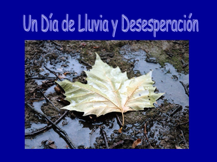 Un Día de Lluvia y Desesperación