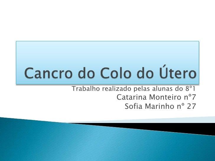 Cancro do colo do útero (2)